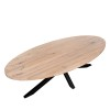 Charrell - DINING TABLE DORIN - 260 x 120 H 77 CM (image 5)